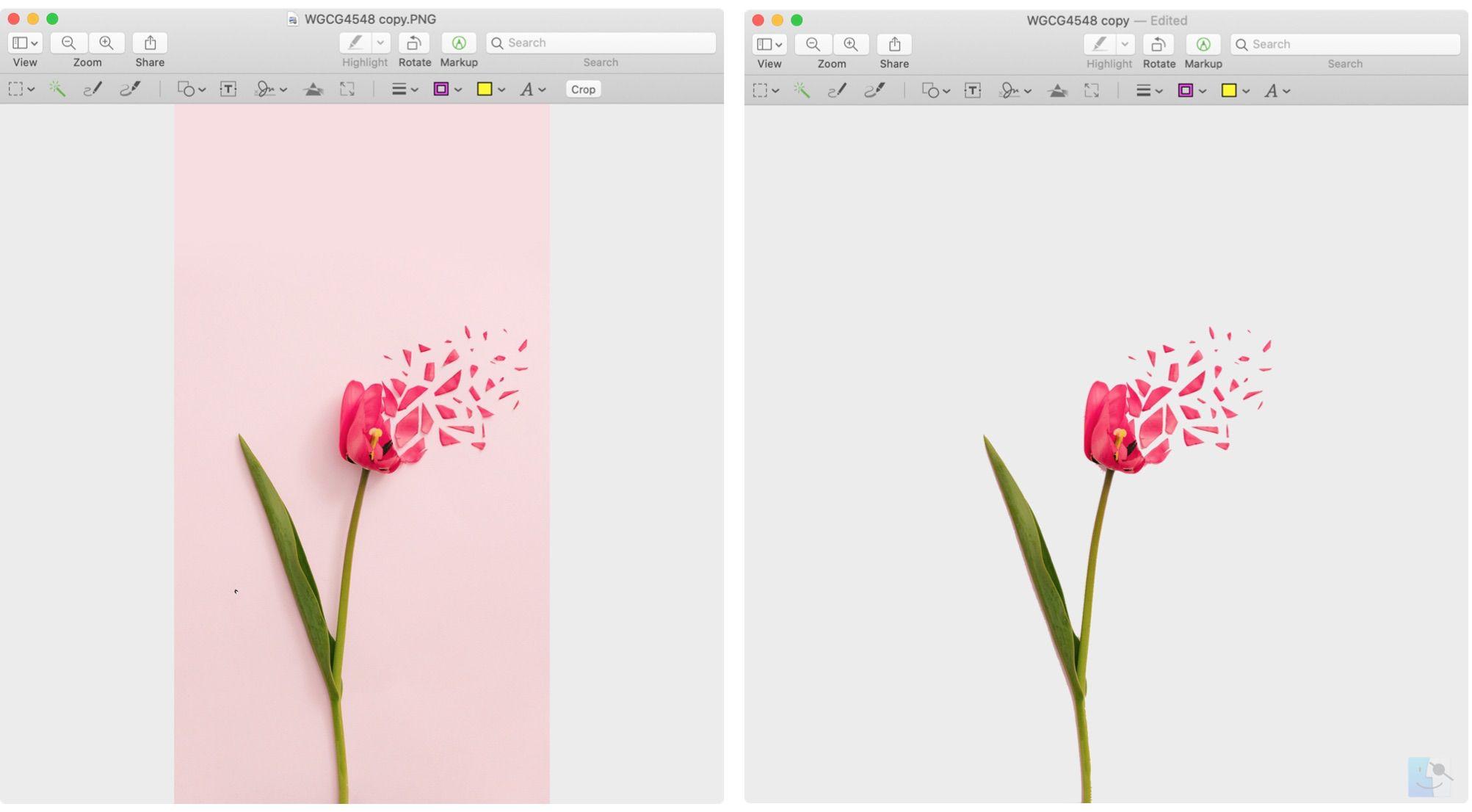 Как удалить фон с изображения с помощью предварительного просмотра