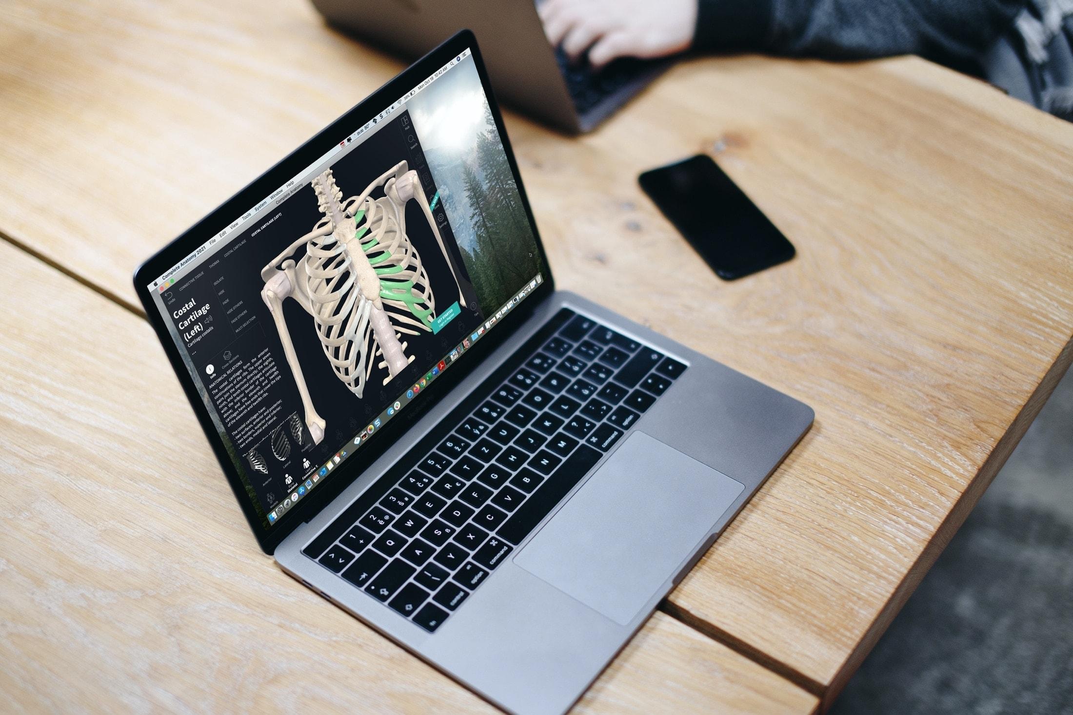 Лучшие бесплатные приложения по анатомии для Mac для студентов-медиков