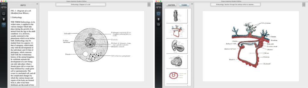 Приложение Grays Anatomy Student Edition для Mac